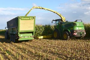 Bllunk: Agrar-Dienstleistung Mais häckseln