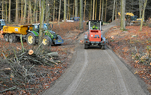 Blunk Wegebau: dauerhafte Lösungen in Wald und Forst
