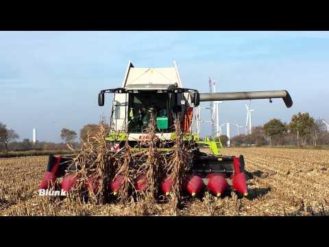 Mais-Auftrag erfüllt: Blunk erntet den letzten Mais 2014