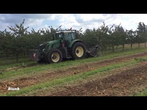 Mulchen und fräsen: aus Baumplantage wird Ackerland
