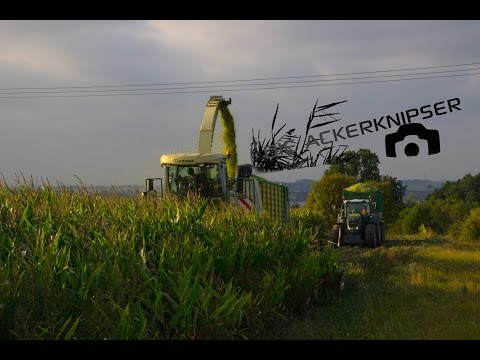 Maishäckseln 2014 mit Lohnunternehmen Blunk