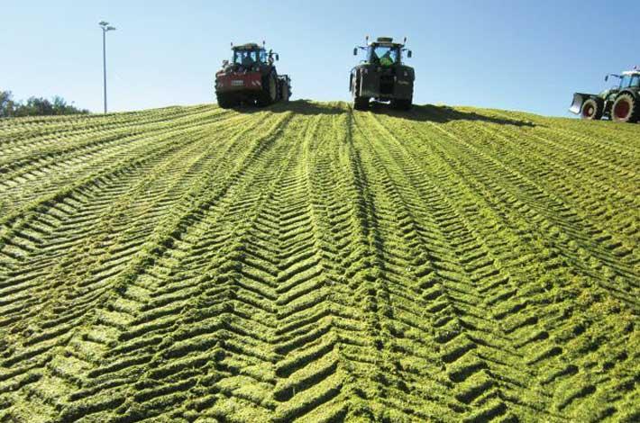 Blunk: Maisschiebeschild mit Heckgewicht mit Fendt 900 Vario