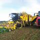 Blunk: Ropa Eurotiger XL und Holmer Terra Variant 600