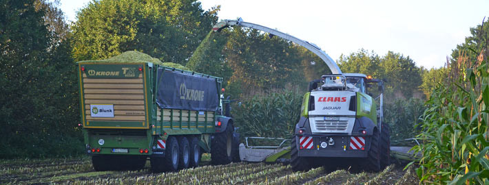 Blunk Übermenge Maisanbau - Titel