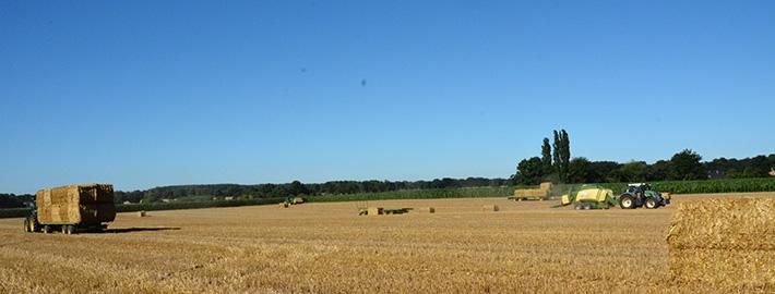 Krone Presse 4x4 im Einsatz auf dem Feld bei der Getreideernte