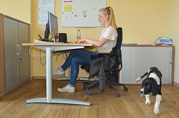 Blunk Ausbildung Büromanagement 2016 neue Azubis