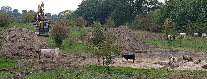 Umwelt-dienstleister Blunk vernässt Naturschutzgebiet