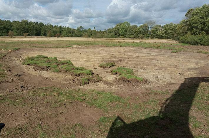 von Umwelt-Dienstleister Blunk eu angelegte Teichfläche im Naturschutzgebiet