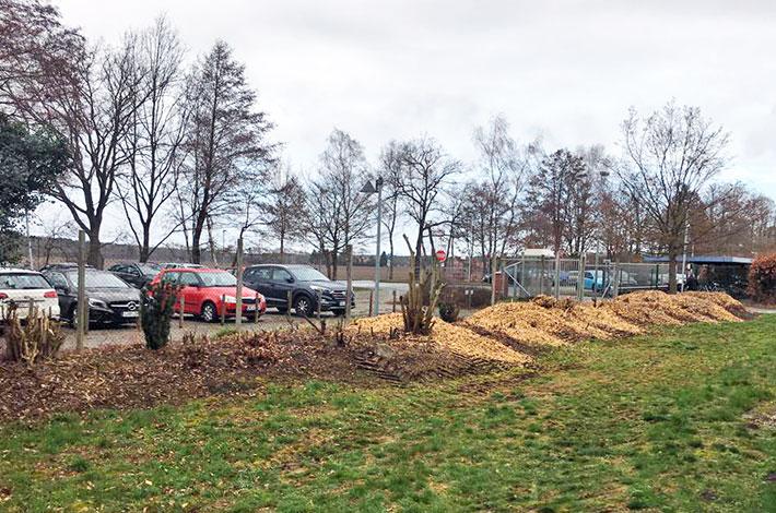 Blunk Baumschnitt Gartenbau Holzhackschnitzel Vahldorf