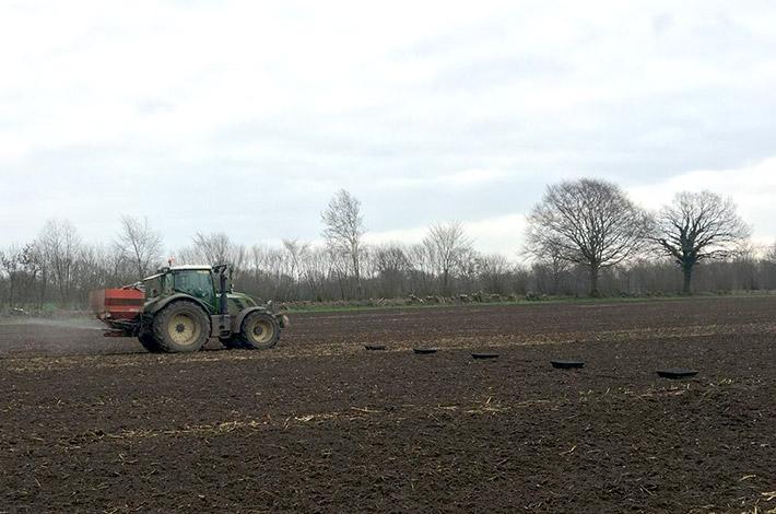 Blunk: Test zur Weizen-Düngung auf Feld