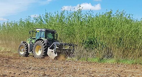 Blunk FAE Mulcher Baumplantage
