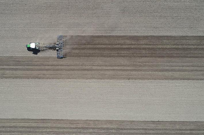 Blunk: Saatbettbereitung mit Fendt Raupentraktor und Dal-Bo 6