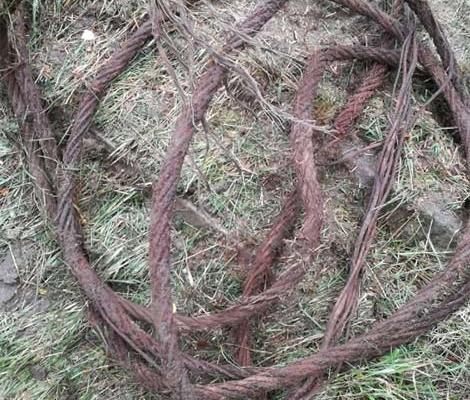 Blunk baut Natur-Golfanlage - Eisenreste entfernen