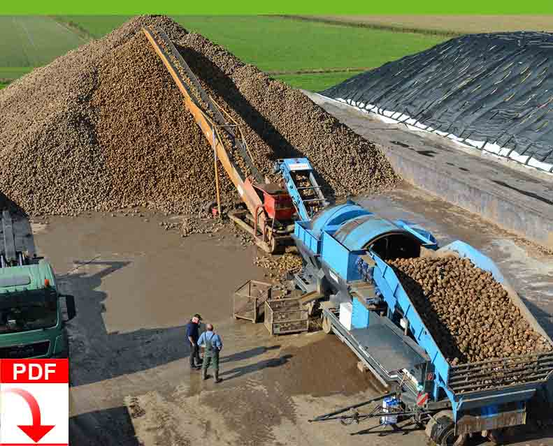 Download Blunk Dienstleistung Agrar: Rübenaufbereitung