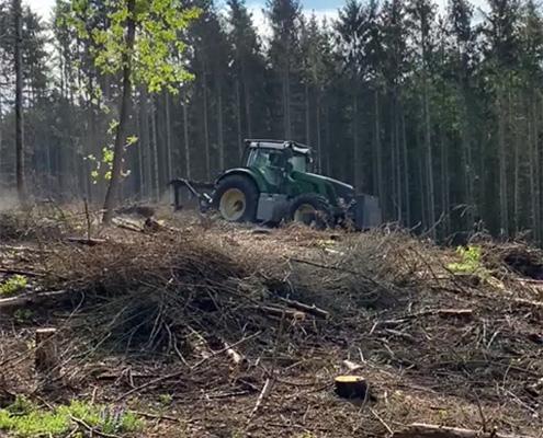 Blunk mulcht Forst gegen den Borkenkäfer 03