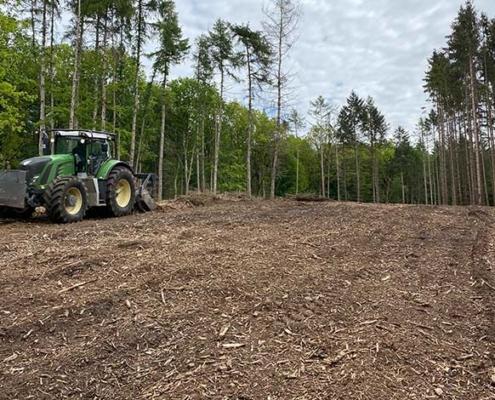 Blunk mulcht Forst gegen den Borkenkäfer 13