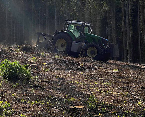 Blunk mulcht Forst gegen den Borkenkäfer 14
