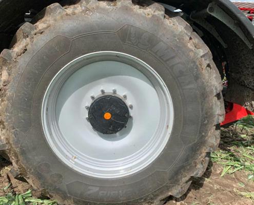 Blunk testet leichten Holmer 485 im Maisbestand - 04