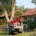 Blunk: Baum fällen - Spezialfällung - Titelbild