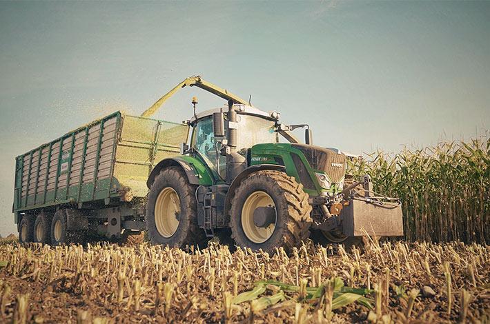 Blunk im Film beim Mais häeckseln in Honigsee - 06