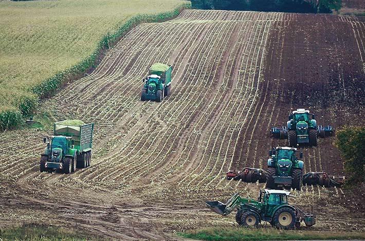 Blunk im Film beim Mais häeckseln in Honigsee - 08