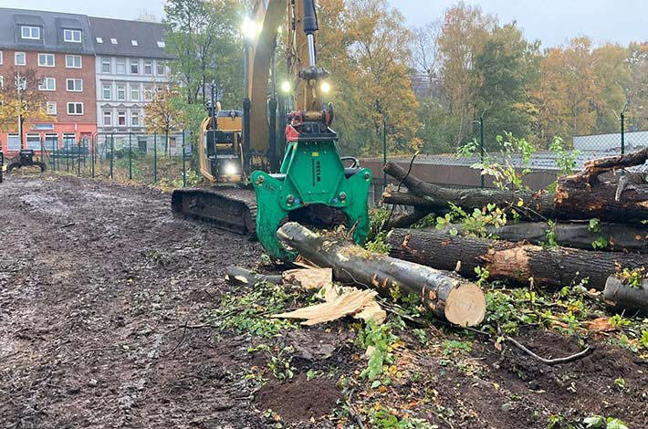 Blunk Umwelt Forst Baufeld Räumung Bäume fällen 05