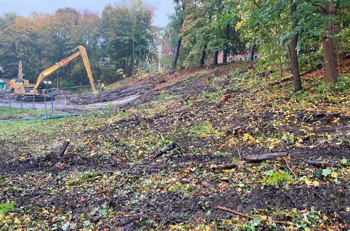 Blunk Umwelt Forst Baufeld Räumung Bäume fällen 09