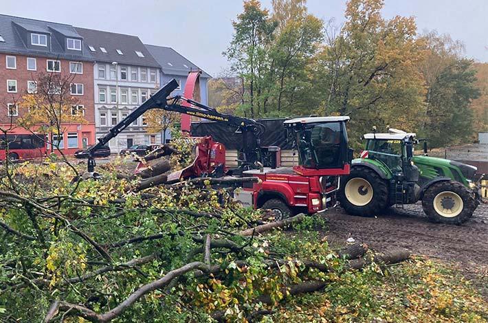 Blunk Umwelt Forst Baufeld Räumung Bäume fällen 25