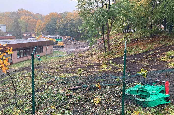 Blunk Umwelt Forst Baufeld Räumung Bäume fällen 34