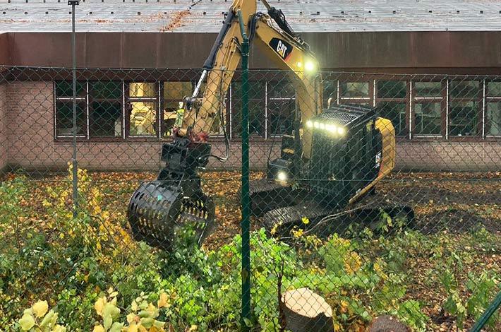 Blunk Umwelt Forst Baufeld Räumung Bäume fällen 37