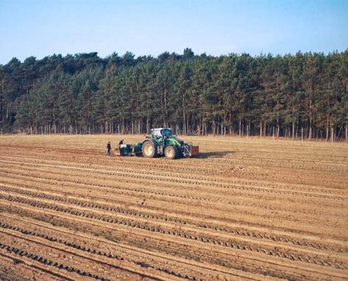 Blunk: Bäume pflanzen für NfG für TESLA 16