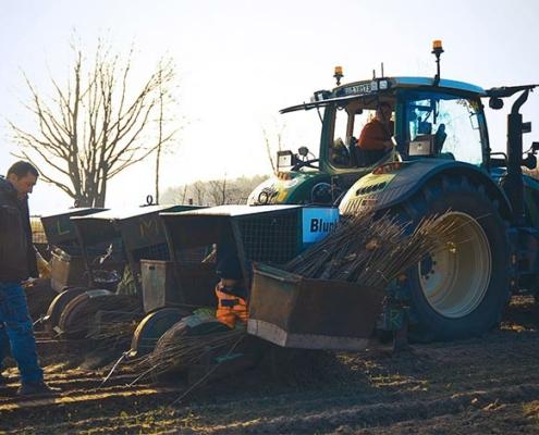 Blunk: Bäume pflanzen für NfG für TESLA 18