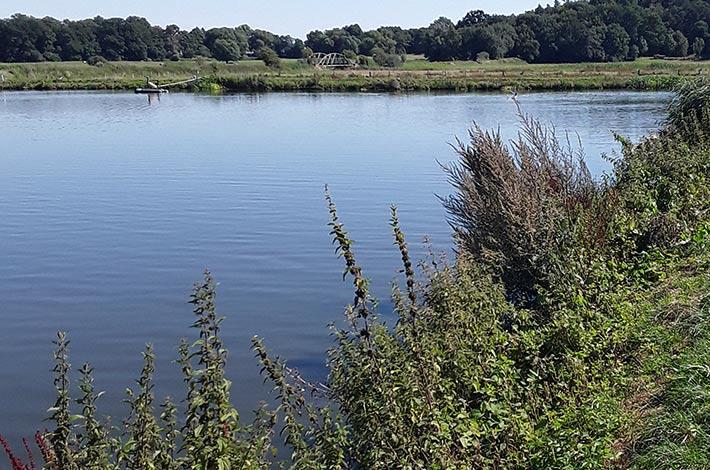 bBlunk Umwelt Teich Entschlammung 01