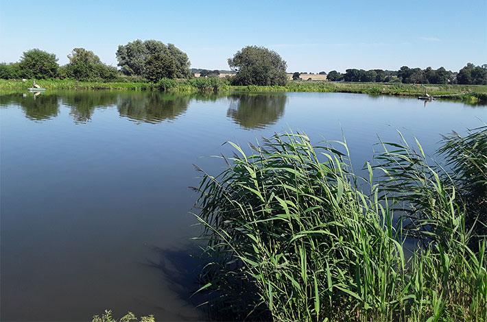 Blunk Umwelt Teich Entschlammung 02