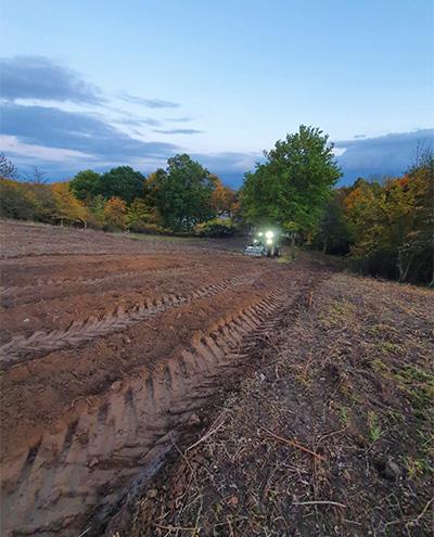 Blunk: Rodung und Räumung von Hangflächen für Weidebewirtschaftung 73