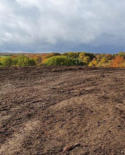 Blunk: Rodung und Räumung von Hangflächen für Weidebewirtschaftung 82