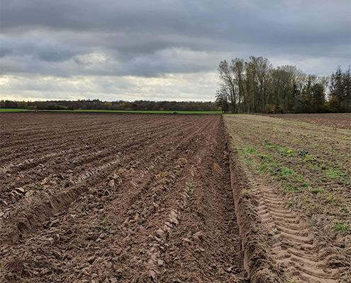 Lohnunternehmen Blunk bereitet Ackerflächen mit Tiefenmeissel für Aufforstung vor - 37