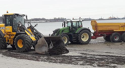 Strandreinigung: Blunk beteiligt sich wieder an Strandgut-Aktion in Flensburg 03