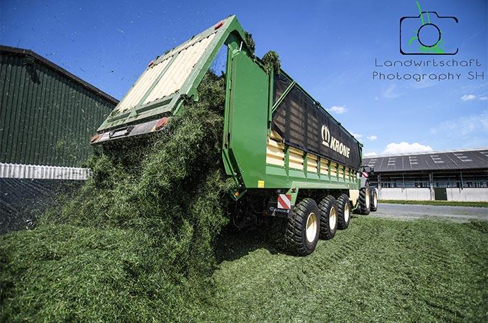 Blunk Grasernte: Ladewagen abladen im Fahrsilo - Bild: Tako Bannas