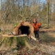 Blunk Umwelt-Team bei Baumfällung zur Gefahrenbeseitigung 03
