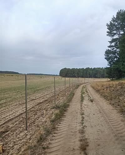 Blunk baut Zaun um Aufforstungsfläche in Beeskow für NFG 14